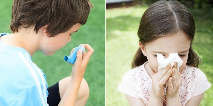 pollen allergy remedies