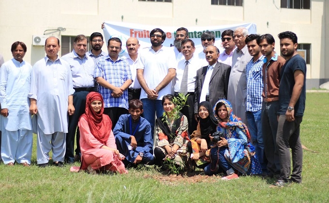 QAU tree plantation Islamabad
